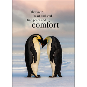 peace and comfort pet loss sympathy card